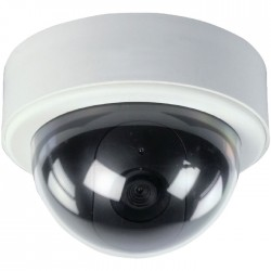 SAS-DUMMY CAM 65 Dummy outdoor dome camera